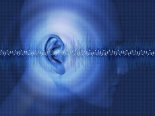 1Hr Tinnitus Assessment